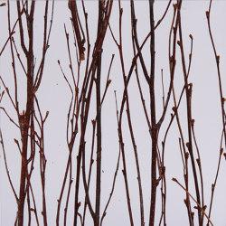 Invision birch | Synthetic panels | DesignPanel