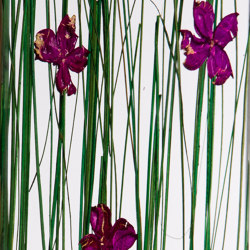 Invision flowerfield | Synthetic panels | DesignPanel