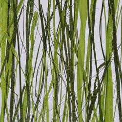 Invision jungle | Synthetic panels | DesignPanel