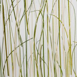 Invision tundra | Synthetic panels | DesignPanel