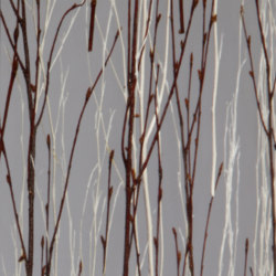 Invision twigs mix | Synthetic panels | DesignPanel