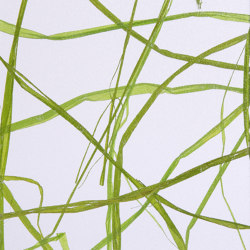 Invision weed green | Synthetic panels | DesignPanel