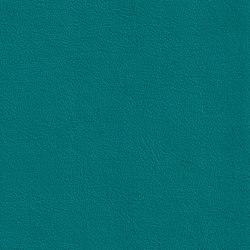 DUKE 55513 Colibri | Naturleder | BOXMARK Leather GmbH & Co KG