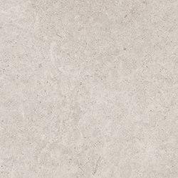 Epika Shell  25x75 | Ceramic panels | Ceramiche Supergres