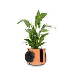 Premium Edition Rame | Plant pots | Clairy