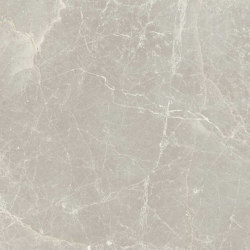 Exalt Silver Light | Ceramic tiles | FLORIM
