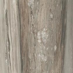 Étoile de Rex Étoile Tropical | Ceramic tiles | FLORIM