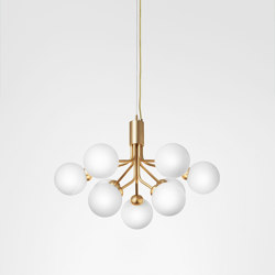 Apiales 9 Brushed Brass | Suspended lights | Nuura