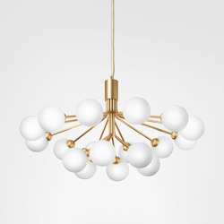 Apiales 18 Brushed Brass | Suspended lights | Nuura
