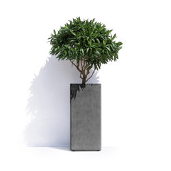 Barcelona R | Plant pots | Cosapots