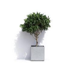 Geneva R | Plant pots | Cosapots