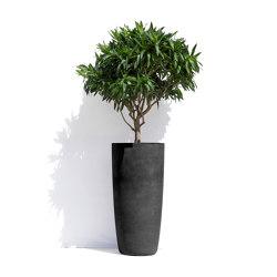 Helsinki H | Plant pots | Cosapots