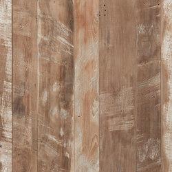 Wings | Planchas de madera | Wonderwall Studios