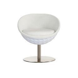 lillus eagle   dinner chair / cocktail chair   Chairs   lento