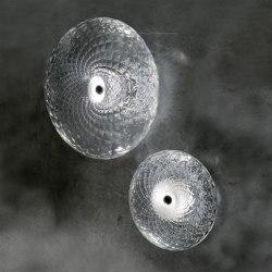 20032838