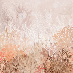Anthozoa | Wall coverings / wallpapers | WallPepper
