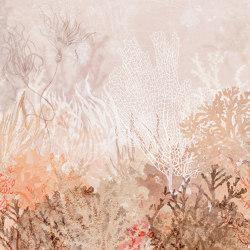 Anthozoa | Revêtements muraux / papiers peint | WallPepper