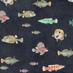 Aquaticus | Revestimientos de paredes / papeles pintados | WallPepper