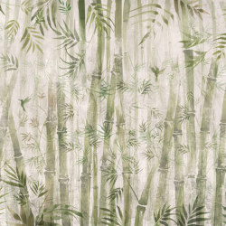 Bamboo | Wall coverings / wallpapers | WallPepper