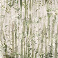 Bamboo | Revêtements muraux / papiers peint | WallPepper