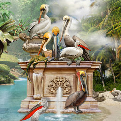 Dumont | Wall coverings / wallpapers | WallPepper