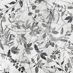 Fotogrammi | Revestimientos de paredes / papeles pintados | WallPepper