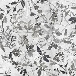 Fotogrammi | Revêtements muraux / papiers peint | WallPepper