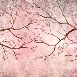 Pin cherry | Carta parati / tappezzeria | WallPepper