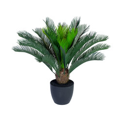 Cycas Palm small | Artificial plants | Götessons