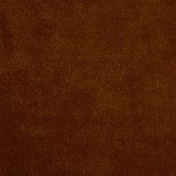 Veda Amber | Drapery fabrics | Anthology