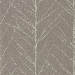 Tali Gilver/Graphite   Wall coverings / wallpapers   Anthology