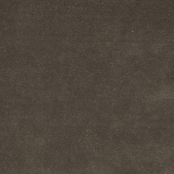 Veda Putty | Drapery fabrics | Anthology