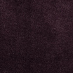 Veda Plum | Drapery fabrics | Anthology