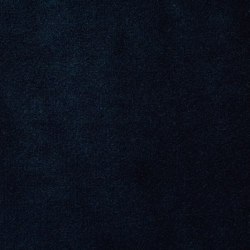 Veda Midnight | Drapery fabrics | Anthology