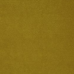 Veda Lime | Drapery fabrics | Anthology