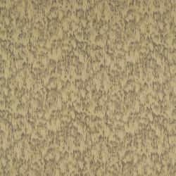 Viro Lime/Pewter | Drapery fabrics | Anthology