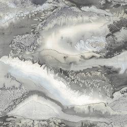 Obsidian Snowflake – PANEL B | Carta parati / tappezzeria | Anthology