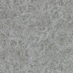 Lacquer Platinum | Wall coverings / wallpapers | Anthology
