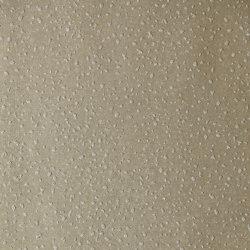 Foxy Sandstone | Carta parati / tappezzeria | Anthology