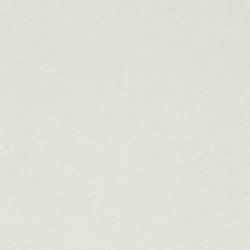 Shellac Parchment | Revestimientos de paredes / papeles pintados | Anthology
