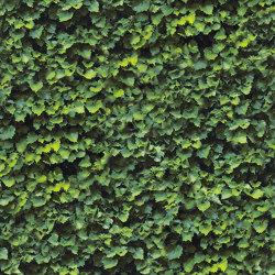 Limpha Arborea | Sistemi facciate | Casalgrande Padana