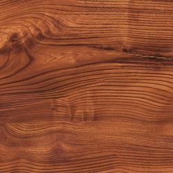 ALUCOBOND® legno Rubra Ulmus D8003   Sistemas de fachadas   3A Composites
