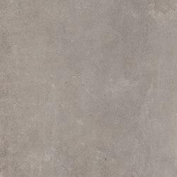 Concrete Taupe | Ceramic tiles | Rondine