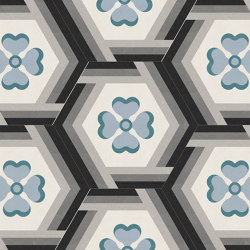 Hexagon-30-005 | Concrete tiles | Karoistanbul