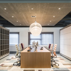 RAW | Acoustic ceiling systems | OWA