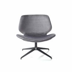 Eon Lounge | Armchairs | Diemme