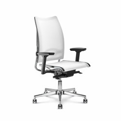 Flash | Office chairs | Diemme