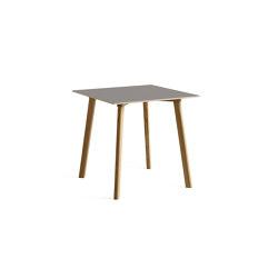 Copenhague Deux Table CPH210 | Mesas comedor | HAY