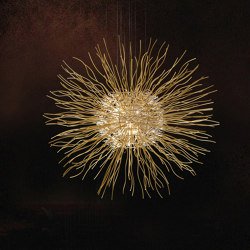 Sol | Suspended lights | Yellow Goat Design