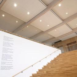 OWAcoustic premium Sinfonia | Plafonds acoustiques | OWA
